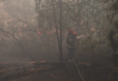 Пожежа на Луганщині не вщухає